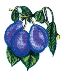Plums on Branch embroidery design