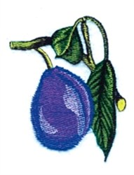 Plum on Branch embroidery design