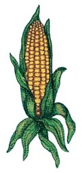 Corn in Husk embroidery design