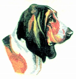 Bassett Hound embroidery design