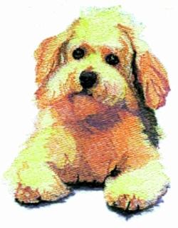 Bichon Friese Puppy embroidery design