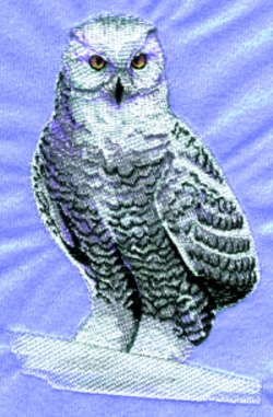 Snow Owl embroidery design