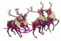 4 Reindeer embroidery design