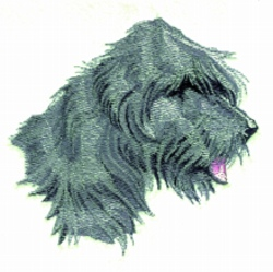 Bouvier embroidery design