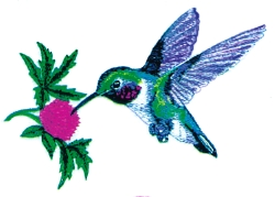 Hummingbird & Clover embroidery design