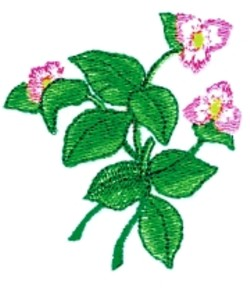 Strawberry Flowers embroidery design