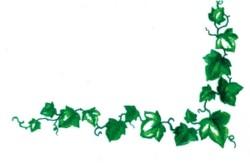 Ivy Corner embroidery design