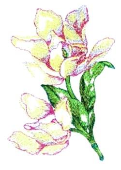 Magnolias embroidery design