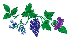 Cherries & Grapes embroidery design
