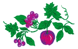 Cherries & Apples embroidery design