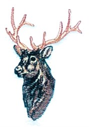 Elk Bust embroidery design