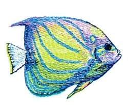 Blue King Angel Fish embroidery design