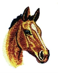 Colt Head embroidery design