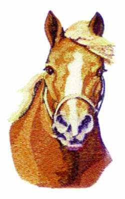 Draft Horse embroidery design