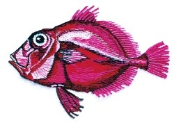 Red Dory embroidery design