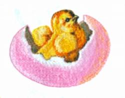 New Born Chick embroidery design