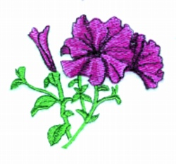Petunia & Bud embroidery design