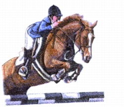 Young Jumper embroidery design