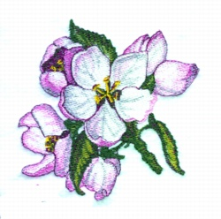 Apple Blossom Bouquet embroidery design