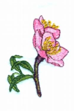 Peach Flower embroidery design