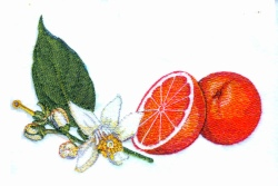 Orange & Blossoms embroidery design