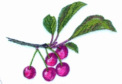 Cherry Bunch embroidery design