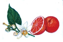 Oranges & Blossoms embroidery design