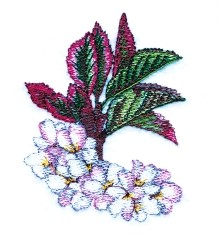 Cherry Blossoms embroidery design