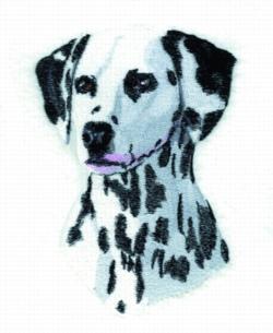 Dalmation embroidery design