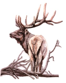 Small Elk embroidery design