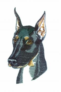 Doberman embroidery design