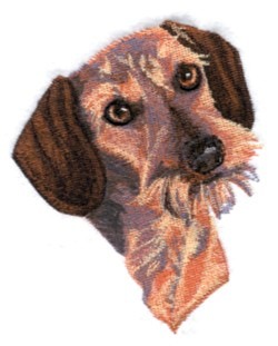 WireHaired Dachshund embroidery design