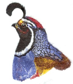 Quail Head embroidery design