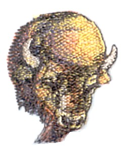 Buffalo Head small embroidery design