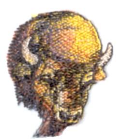 Buffalo Head embroidery design