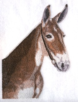 Mule embroidery design