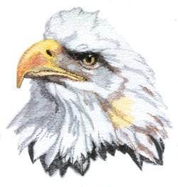 Eagle Head embroidery design
