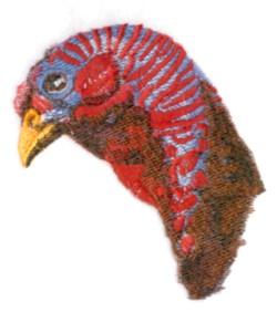 Wild Turkey Head embroidery design