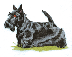 Black Scottie embroidery design