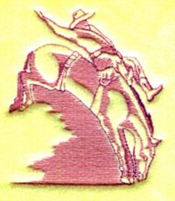 Bare Back Bronc embroidery design