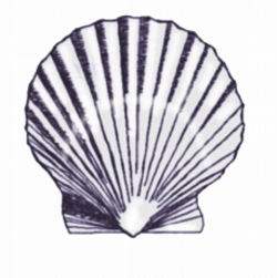 Large Shell embroidery design