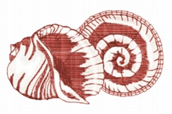 Shell - Double embroidery design