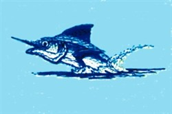 Marlin Breaching Water embroidery design