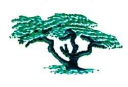 Cypress Tree embroidery design