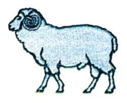 Cartoon Ram embroidery design