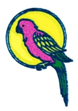 Cartoon Parrott embroidery design
