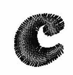 Candice c embroidery design