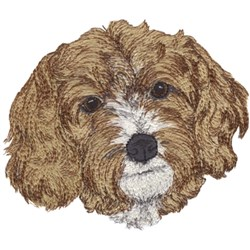 Cavapoo embroidery design