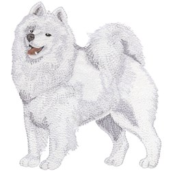 Samoyed embroidery design