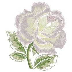 White Rose embroidery design